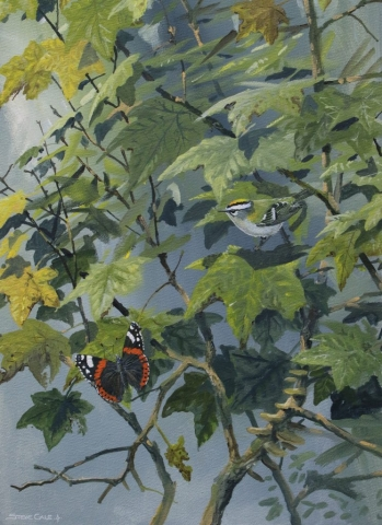 Autumn Jewels Firecrest and Red Admiral card